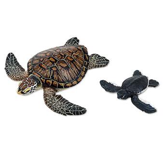 立体図鑑ウミガメの親子ボックス アオウミガメ フィギュア