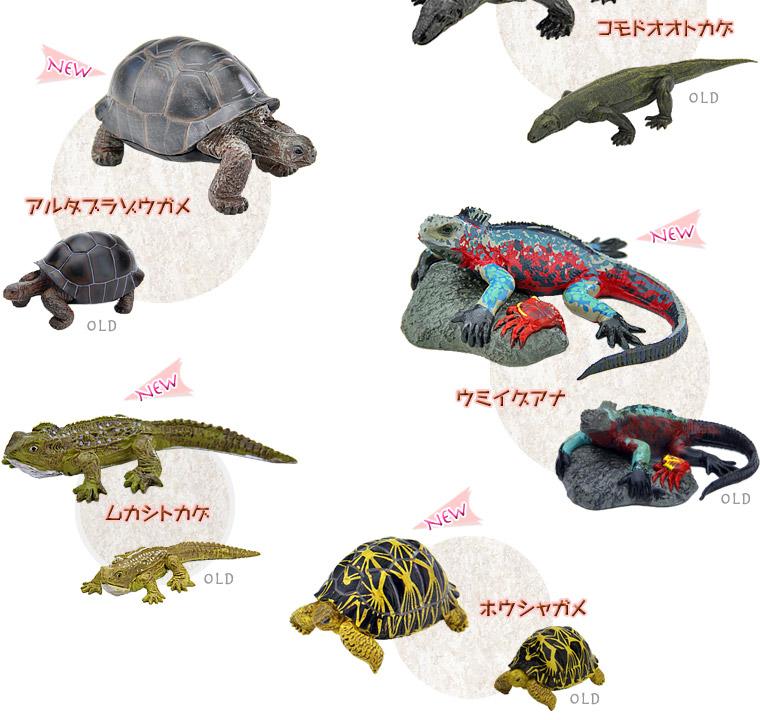 アルダブラゾウガメ、ウミイグアナ、ムカシトカゲ、ホウシャガメ