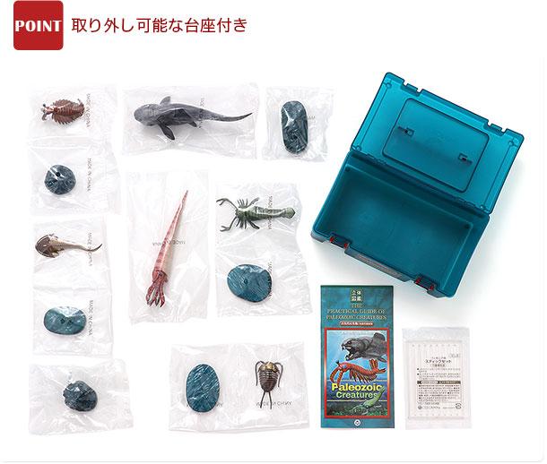 立体図鑑 古生代の生物ボックス 商品内容