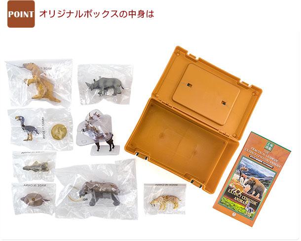 立体図鑑 フィギュアボックス 商品内容