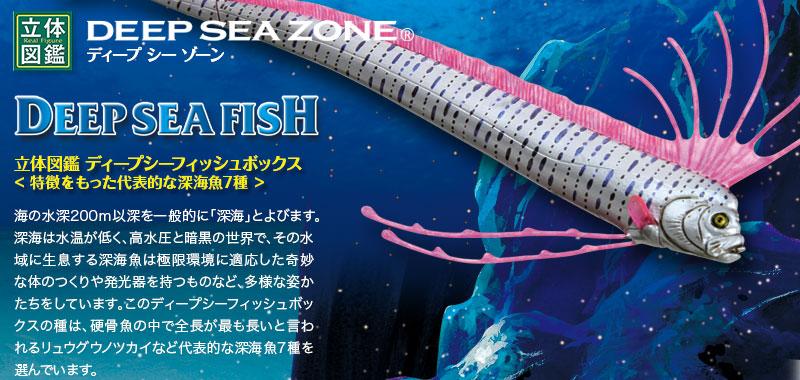 立体図鑑 ディープシーフィッシュボックス〜特徴をもった代表的な深海魚7種