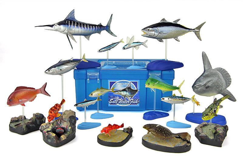 立体図鑑 ソルトウォーターフィッシュボックス(身近な日本の海水魚)