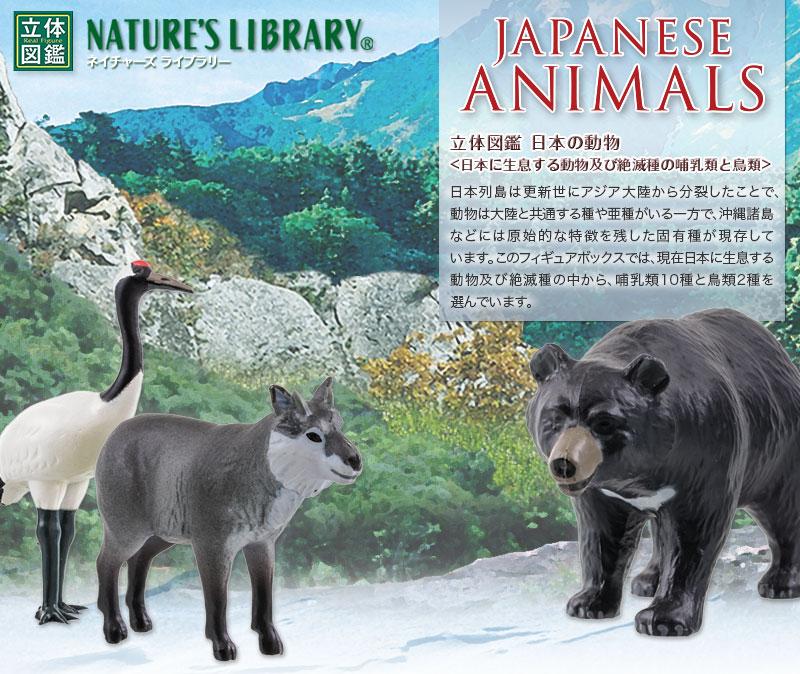 リアル フィギュア 日本の動物 立体図鑑