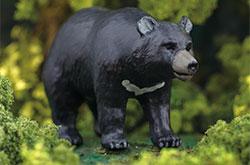 立体図鑑 日本の動物ボックス ニホンツキノワグマ
