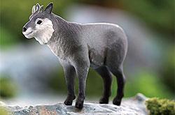 立体図鑑 日本の動物ボックス ニホンカモシカ