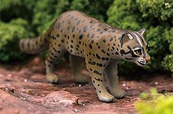 立体図鑑 日本の動物ボックス イリオモテヤマネコ