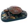 立体図鑑やんばるの生物ボックス リュウキュウヤマガメ フィギュア