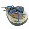 立体図鑑やんばるの生物ボックス ヤシガニ フィギュア