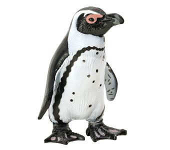 立体図鑑ペンギンボックス ケープペンギン フィギュア