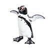立体図鑑ペンギンボックス フンボルトペンギン フィギュア