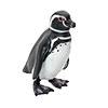 立体図鑑ペンギンボックス マゼランペンギン フィギュア