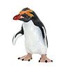 立体図鑑ペンギンボックス マカロニペンギン フィギュア