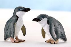 立体図鑑 ペンギンボックス コガタペンギン