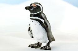 立体図鑑 ペンギンボックス マゼランペンギン