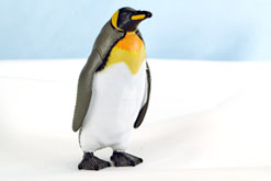 立体図鑑 ペンギンボックス キングペンギン