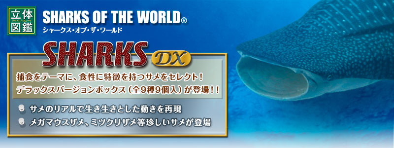 立体図鑑シャークデラックスボックス(サメフィギュア)