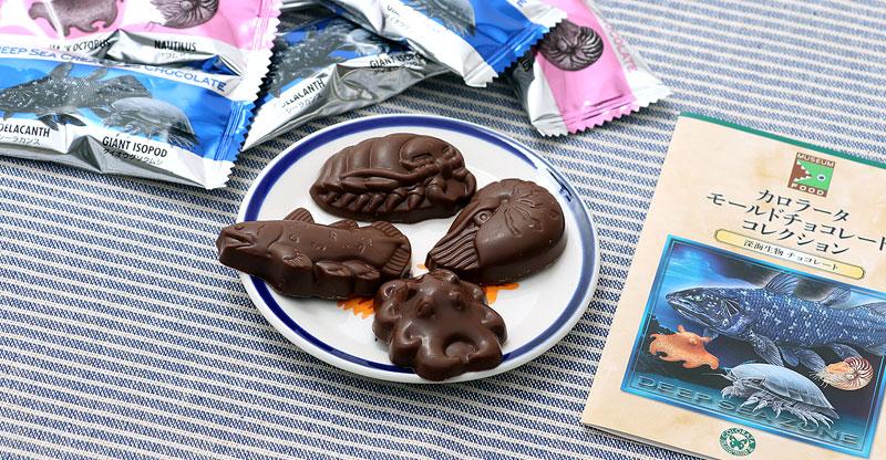 深海生物 チョコレート