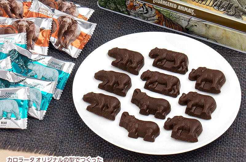 アニマル チョコレート