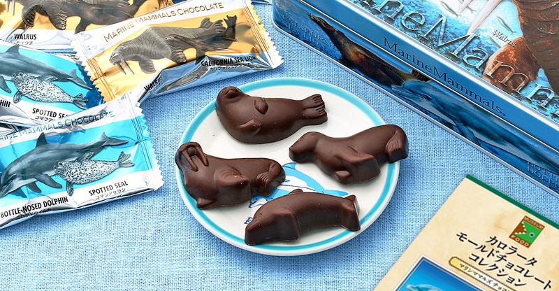 マリンママルズ チョコレート