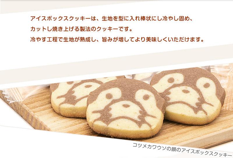 コツメカワウソ クッキー