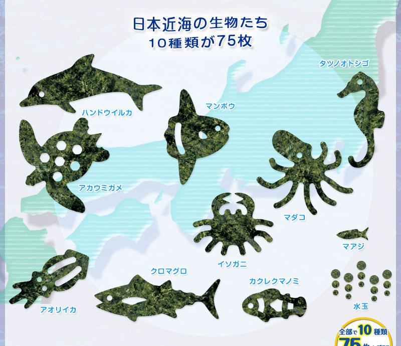 日本近海の生物カット焼きのり 型抜き内容
