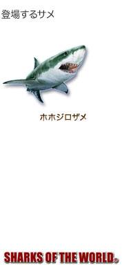 登場するサメ〜シャクスオブザワールド〜ホホジロザメ