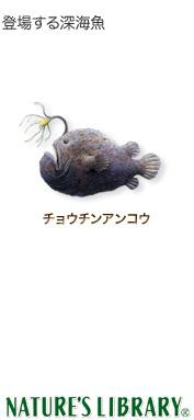 登場する深海魚〜チョウチンアンコウ〜ネイチャーズ ライブラリー