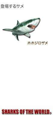 登場するサメ〜ホホジロザメ〜シャークス オブ ザ ワールド