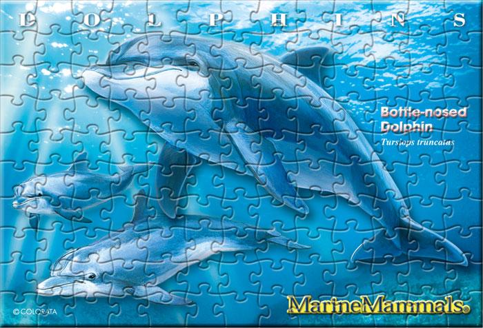 ハンドウイルカ 130ピース ポストカードサイズ ミュージアム ジグソーパズル