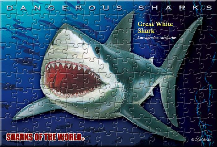 ホホジロザメ 130ピース ポストカードサイズ ミュージアム ジグソーパズル