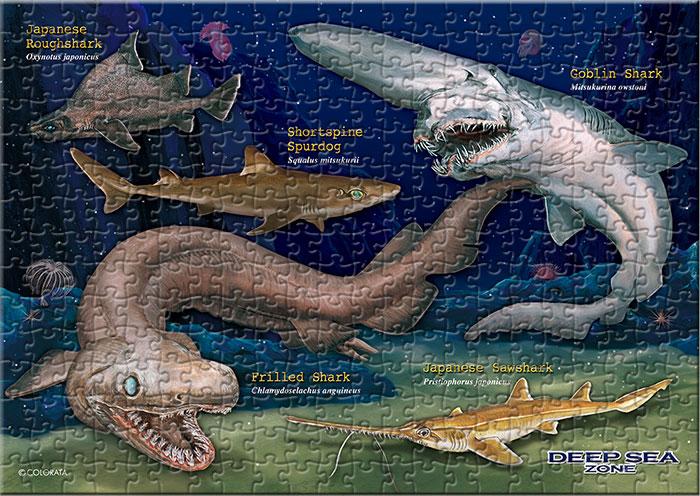 深海ザメ 330ピース B5サイズ ミュージアム ジグソーパズル