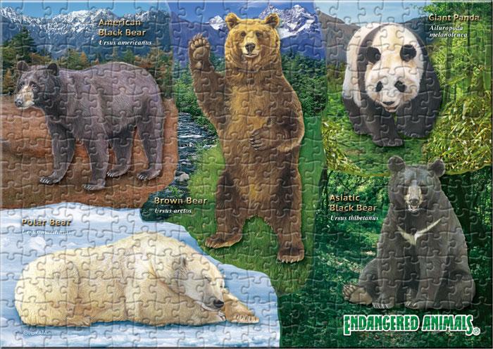 クマの仲間 330ピース B5サイズ ミュージアム ジグソーパズル