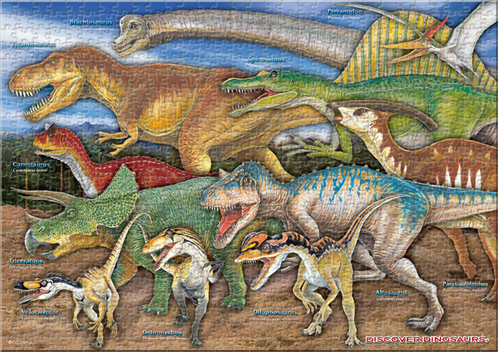 恐竜 720ピース A3サイズ ミュージアム ジグソーパズル