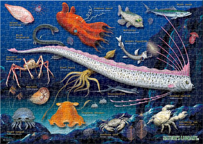 深海生物 720ピース A3サイズ ミュージアム ジグソーパズル