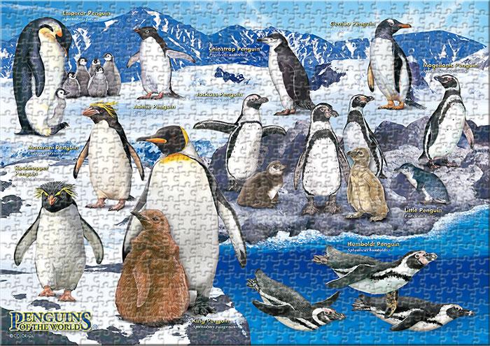 ペンギン 720ピース A3サイズ ミュージアム ジグソーパズル