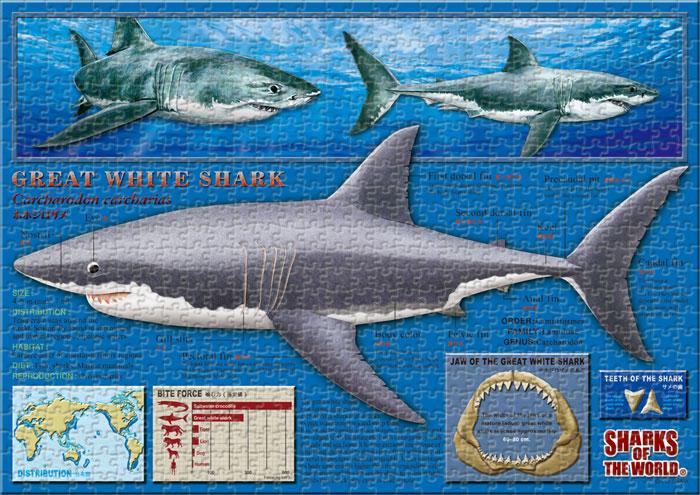 ホホジロザメ 720ピース A3サイズ ミュージアム ジグソーパズル