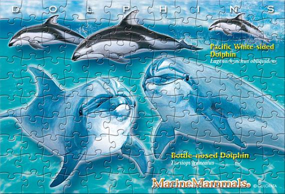 ドルフィン/ポストカードサイズ・130ピース リアルジグソーパズル