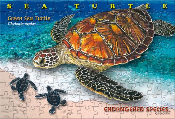 アオウミガメ/ポストカードサイズ・130ピース リアルジグソーパズル