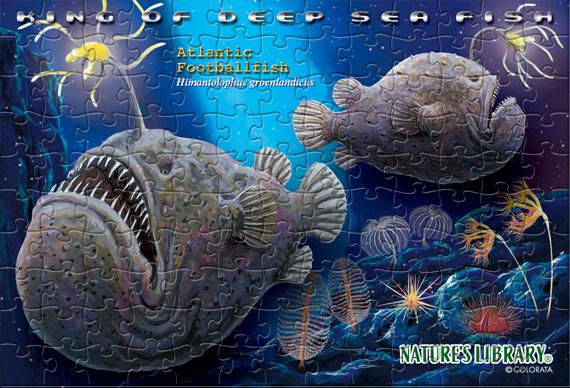 チョウチンアンコウ/ポストカードサイズ・130ピース リアルジグソーパズル