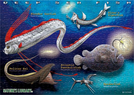 深海魚/B5サイズ・330ピース リアルジグソーパズル