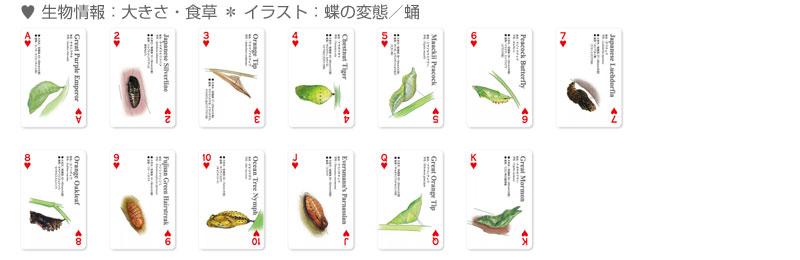 ハートのカードの表