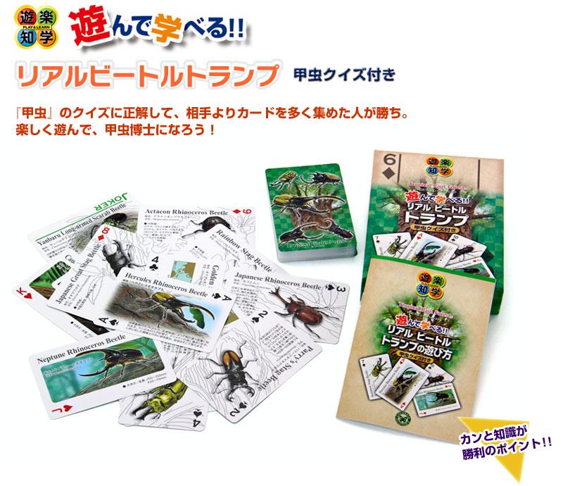 甲虫クイズ付 リアル ビートルトランプ