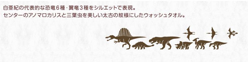 白亜紀の代表的な恐竜10種・翼竜3種をシルエットで表現。センターのアノマロカリスと三葉虫を美しい太古の紋様にしたウォッシュタオル