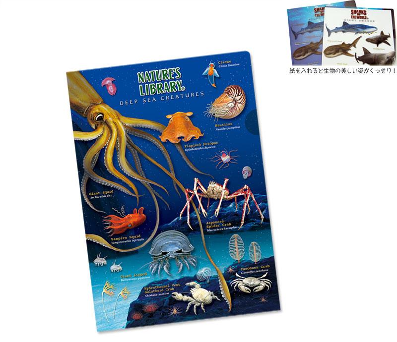 クリアケース 深海生物