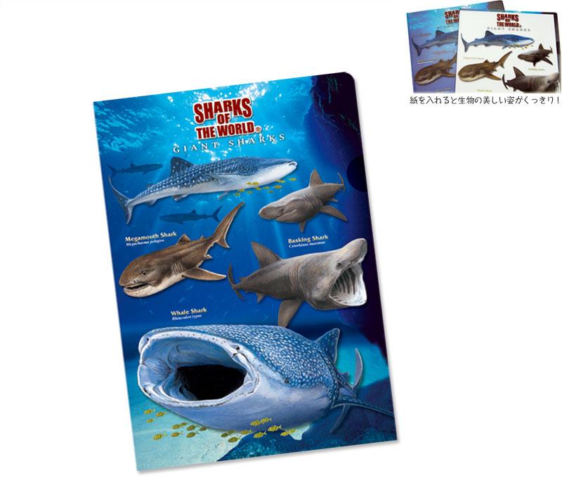 クリアケース 巨大ザメ