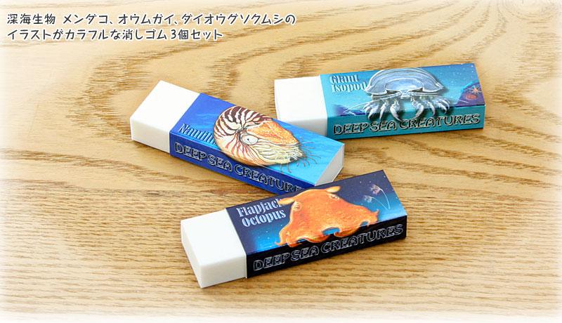 深海生物メンダコ、オウムガイ、ダイオウグソクムシのイラストがカラフルな消しゴム3個セット