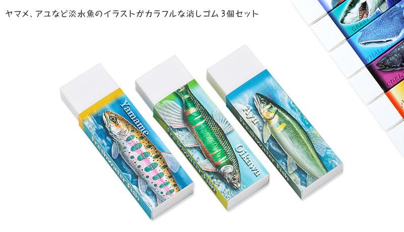 ヤマメ、アユなど淡水魚のイラストがカラフルな消しゴム3個セット