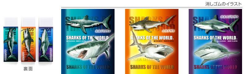 消しゴム3個セット ホホジロザメ、イタチザメ、オオメジロザメのイラスト