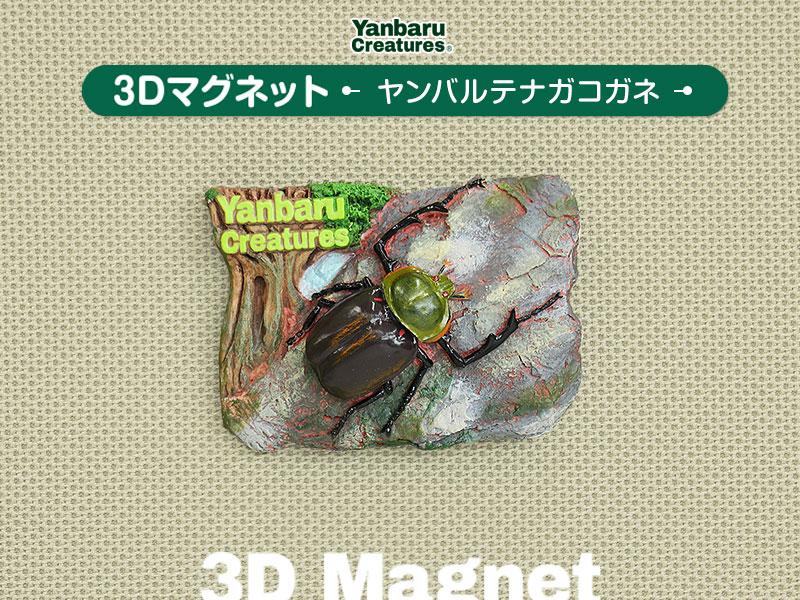 やんばるの生物 3D マグネット ヤンバルテナガコガネ