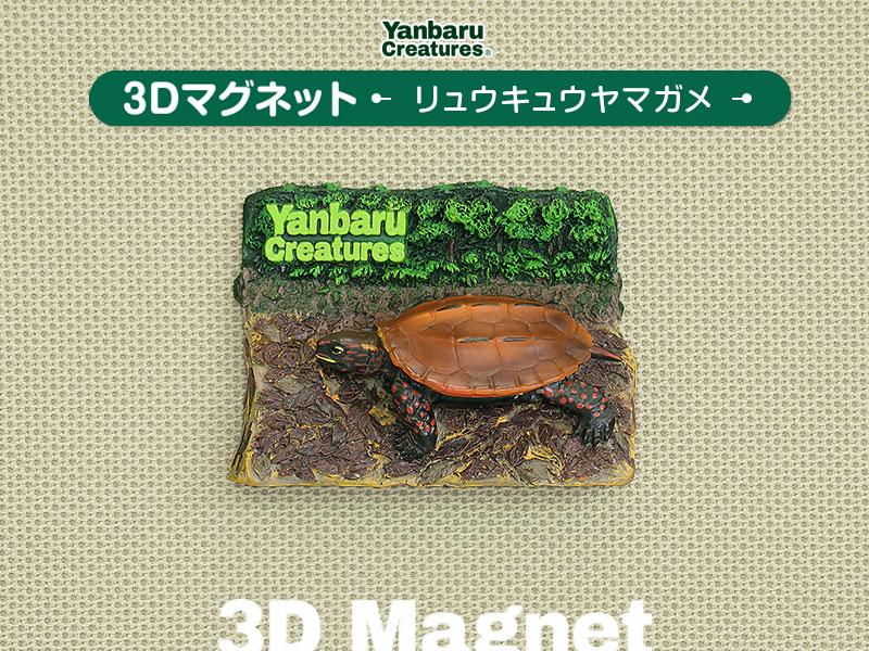 やんばるの生物 3D マグネット リュウキュウヤマガメ